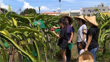 7月熱情嘉義縣!農村小旅行、東石海之夏陸續登場