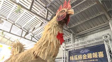 高6尺絲瓜絡大金雞!蘇澳看雞吃月餅