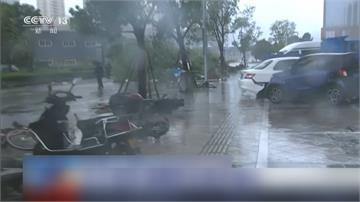 路樹連根拔!哈格比直撲浙江 狂風暴雨停水停電