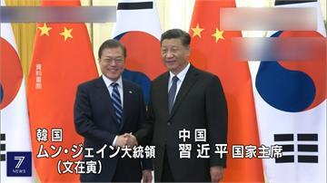 習近平熱線文在寅將訪南韓 強調「好鄰居金不換」