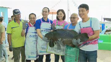 快新聞/李眉蓁訪視高雄養殖漁業 讚石斑魚扭動「很有活力」