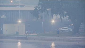 氣候乾熱助長野火!澳洲陷煙霾釀28死