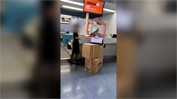 行李超重被加錢怒飆罵日地勤 台大媽:我在行政院上班
