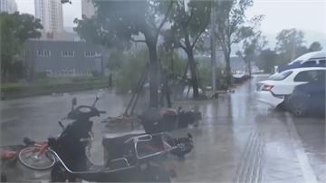 「哈格比」無情登陸浙江 樂清狂風暴雨水淹車 江蘇、上海挫咧等