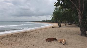 峇里島9日逐步解封 恢復大眾公開活動