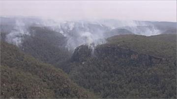 澳洲野火燒不停!遊客衝雪梨景點藍山敗興而歸