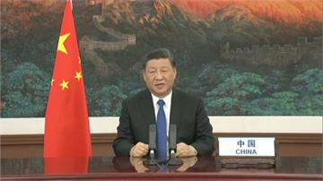 WHA受邀開幕致詞!習近平:中國公開、透明通報疫情