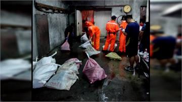 宜蘭民宅驚現「鯨豚肉塊」!  總重達1372公斤