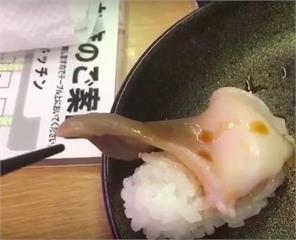 正要吃新鮮生魚片,萬萬沒想到壽司突然「轉守為攻」主動挑逗筷子!