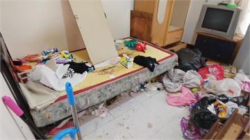 門開大堆蟑螂湧出!惡房客搞髒房間退租 屋主提告不起訴