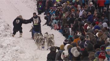 美國雪橇犬大賽開跑!狗狗穿螢光小襪超Q模樣防凍傷