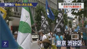 旅日港人東京大遊行 籲港府撤銷惡法