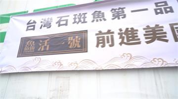 屏東突破疫情難關!首批台灣石斑封櫃銷往美國