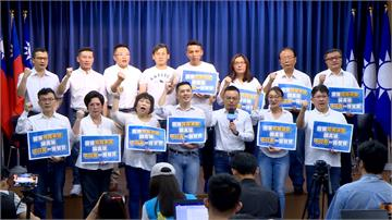 藍營青壯派籲派人補選 在地議員批:高雄吃米粉,台北在喊燒
