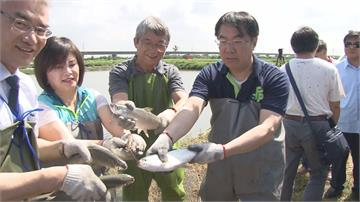 尚青在這裡!台南虱目魚季產地直送