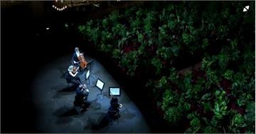 西國解封後音樂會 巴塞隆納植物座上賓