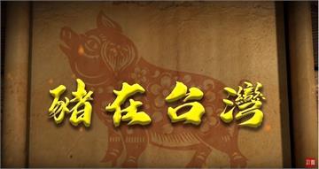 台灣演義/致富、祭典、餐桌全靠豬!台灣豬千年史 2019.07
