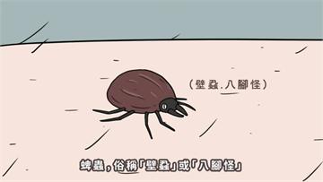 快新聞/中國多省爆「新布尼亞病毒」傳染 已知62人染疫、7人死亡