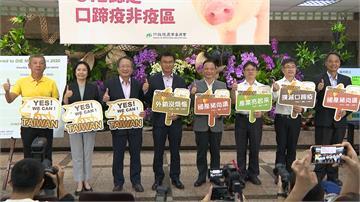 台灣歷經24年終從口蹄疫區除名!強力外銷打豬豬世界盃