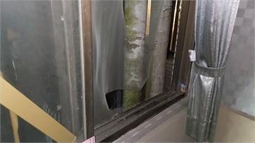 驚!毒蟲想躲警臨檢 爬窗想逃墜9樓身亡