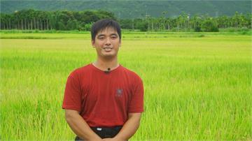加入農業保險  農民也能享有一份安心的保障|寶島樂田誌