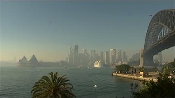 連日野火摧殘成煙霾!雪梨空污指數超標