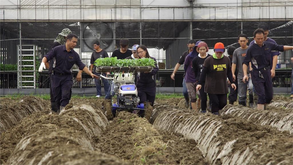 田間的共享經濟  創造雙贏局面|寶島樂田誌