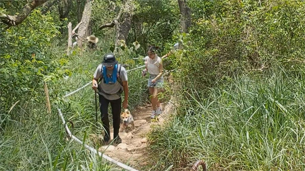 新竹林管處攜手登山協會 推出「山徑認養契約」