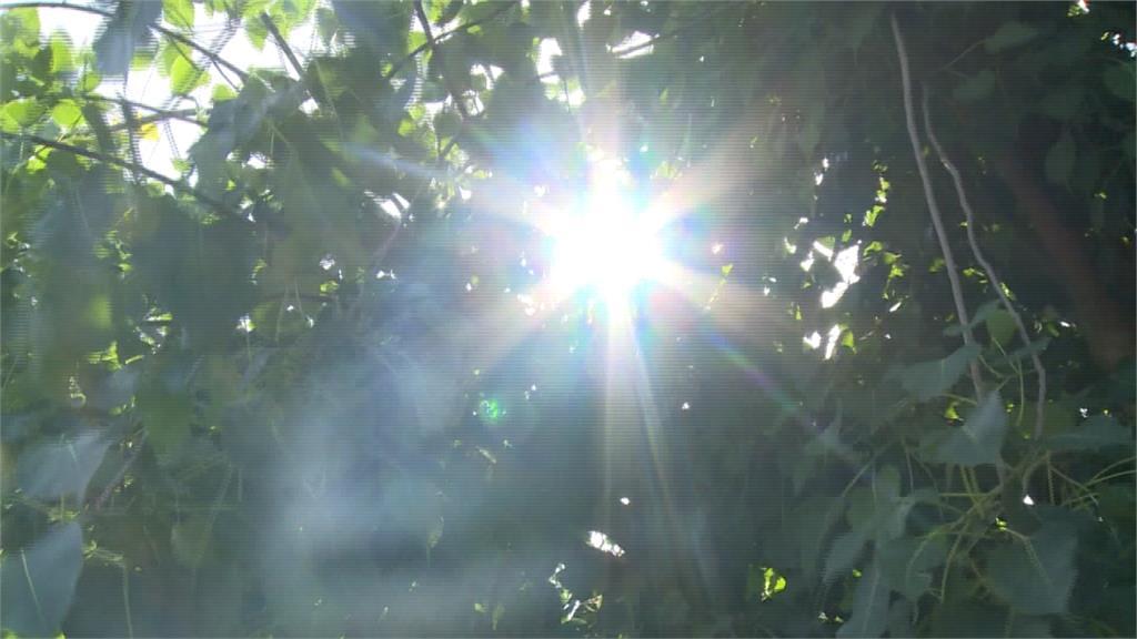 花蓮飆38.5高溫 尖峰用電量刷新6月史上紀錄