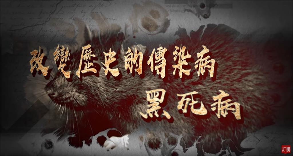 台灣演義/傳染病改變人類史!史上第一場全球疫病 黑死病|2020.03