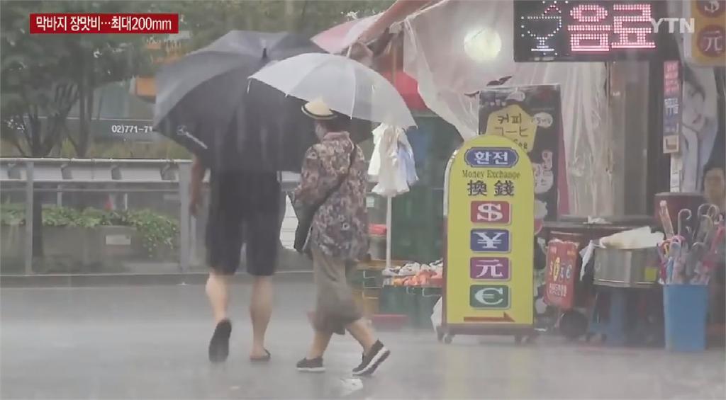 南韓史上最長梅雨季 菜價飆升一顆白菜漲破百元