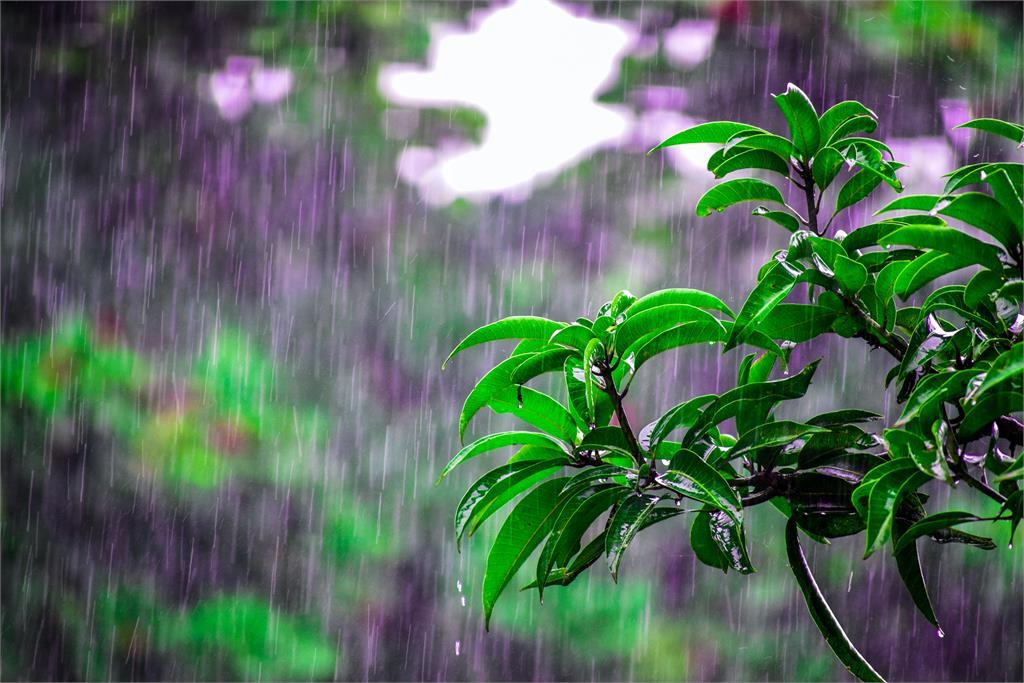 [2020/06/29]九縣市亮高溫燈號!各地注意午後雷陣雨