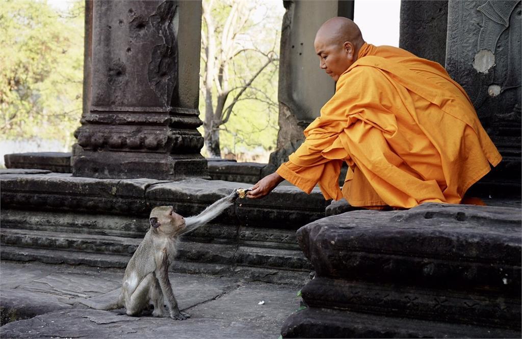 唐美雲飾演「真諦大師」 為戲遠赴柬埔寨拍攝