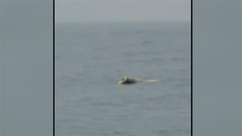 苏澳三仙台海域渔船碰撞 船沉船长获救