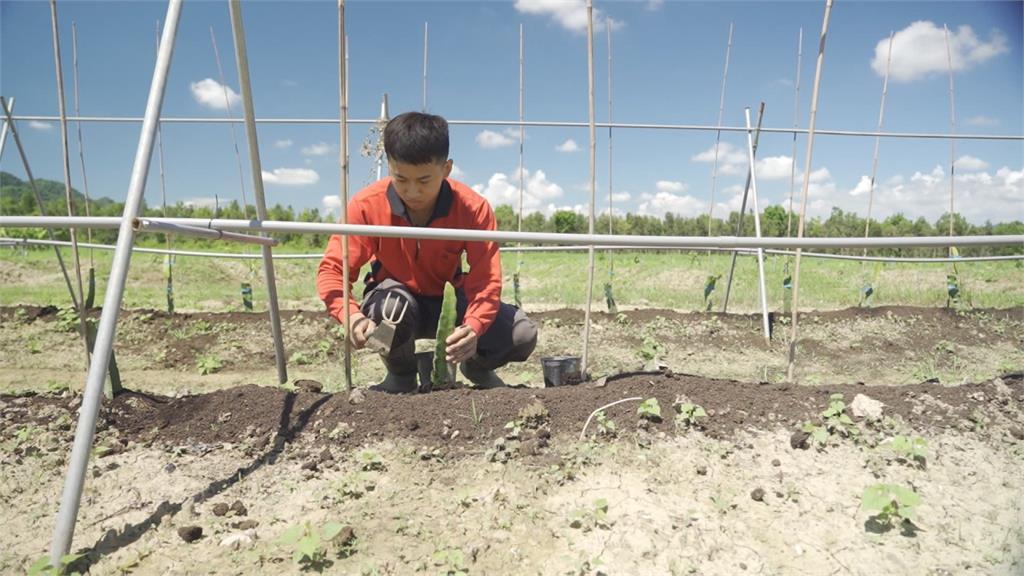 永齡農場2.0!青農共組創業平台「當老闆」創雙贏