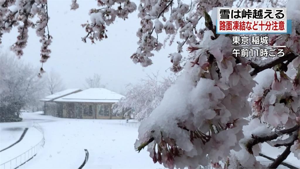 低氣壓、冷氣團影響 日本關東地區下大雪