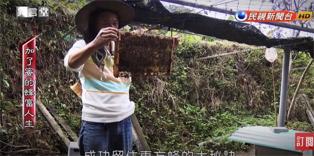 異言堂/加了蜜的「蜂富人生」平溪養蜂故事