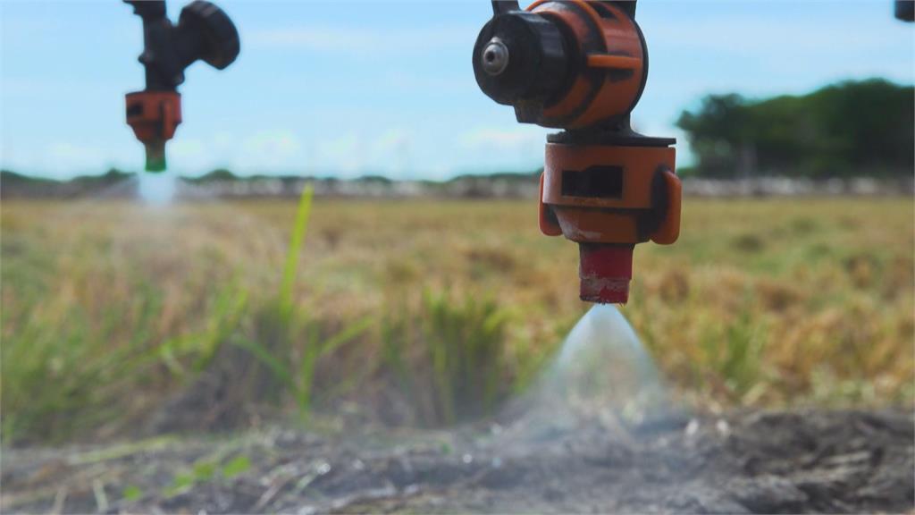 無人機噴藥效果好 「雙證照」農民成長近5倍