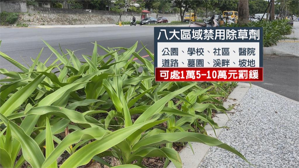 花蓮限制公園、道路等8大區域 禁用除草劑