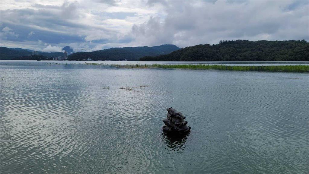 不見客了?「九蛙疊像」1隻現身8隻沉沒 日月潭差35公分滿水位