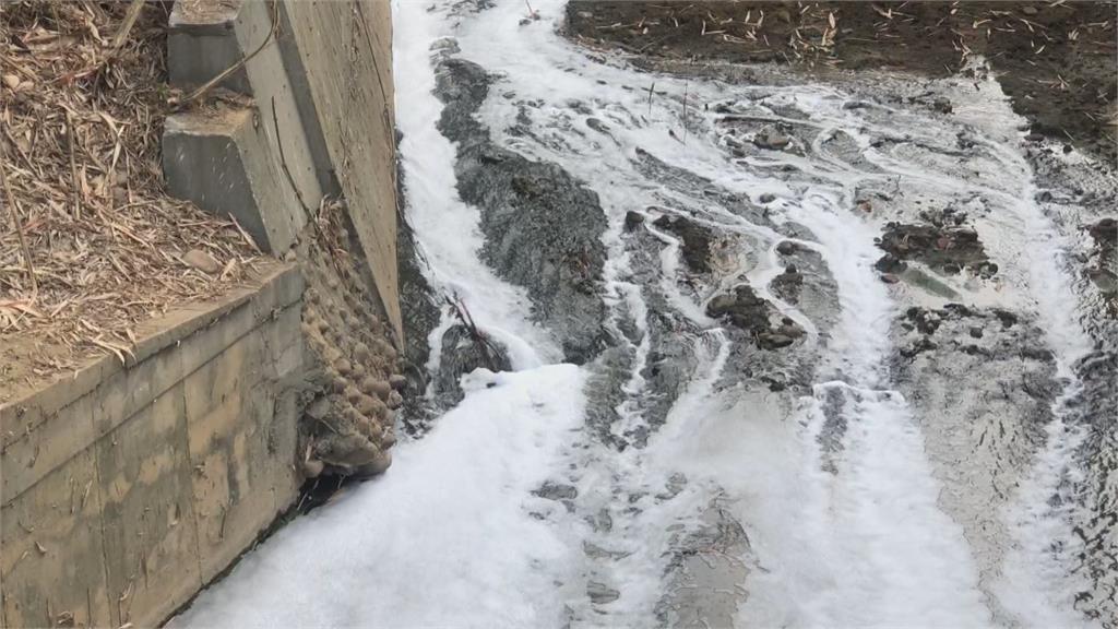 貓羅溪管線排白色泡泡水 上游乾涸成詭異「斷頭河」