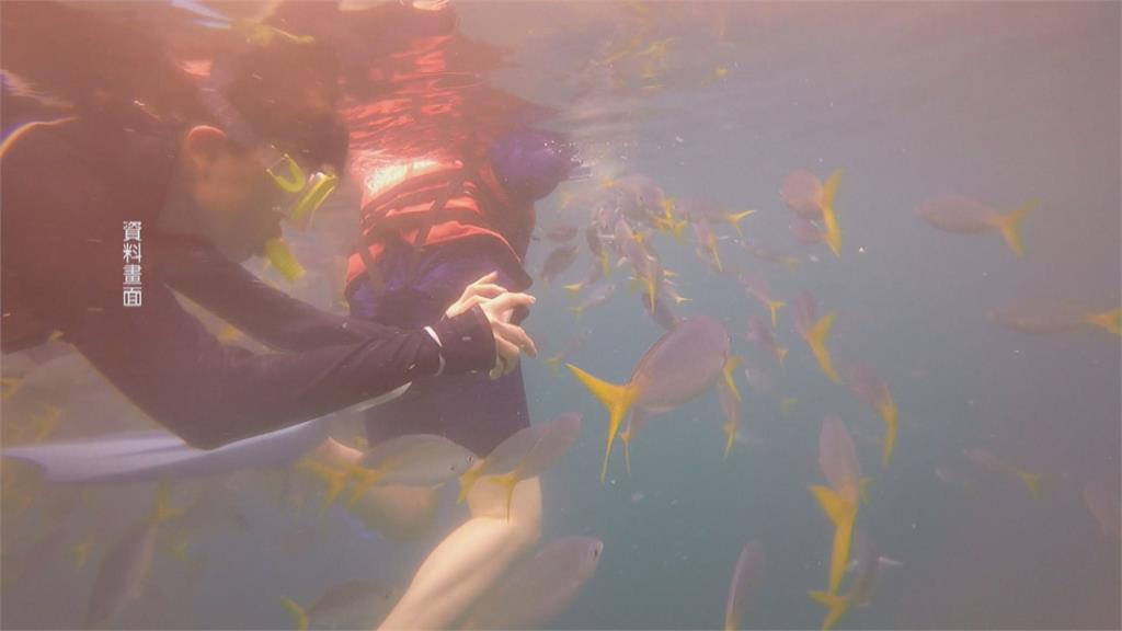 部分帛琉民眾反對台帛旅遊泡泡?旅遊達人:主要從事水上活動 接觸機會小
