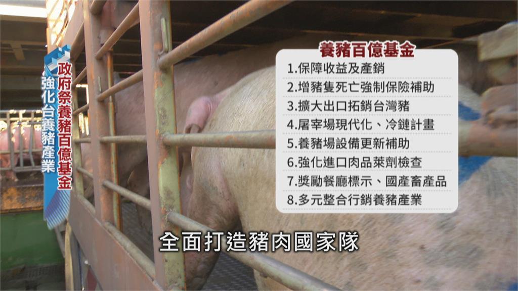 睽違23年台灣生鮮豬重回國際!  百億組國家隊
