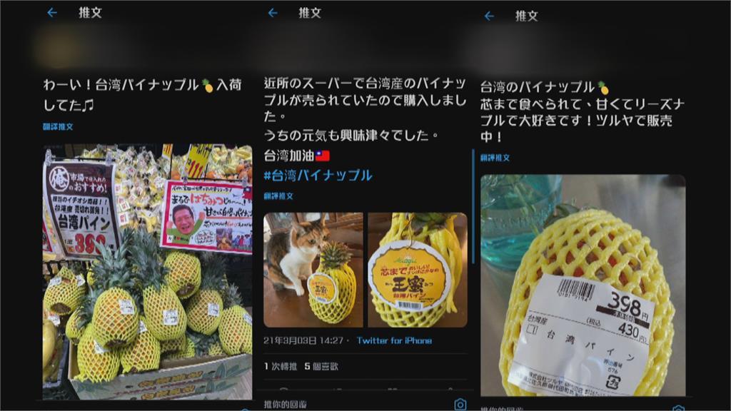 台灣鳳梨空降日本! 一顆158元台幣人氣爆紅