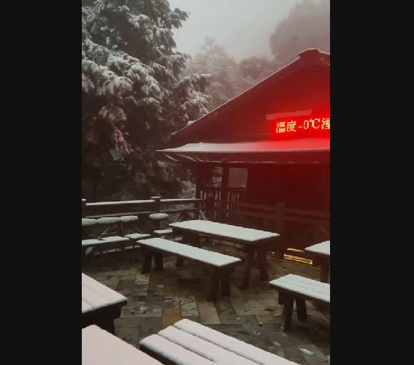 快新聞/超夢幻! 拉拉山再度下雪成「銀白色童話世界」 各地積雪厚達1cm