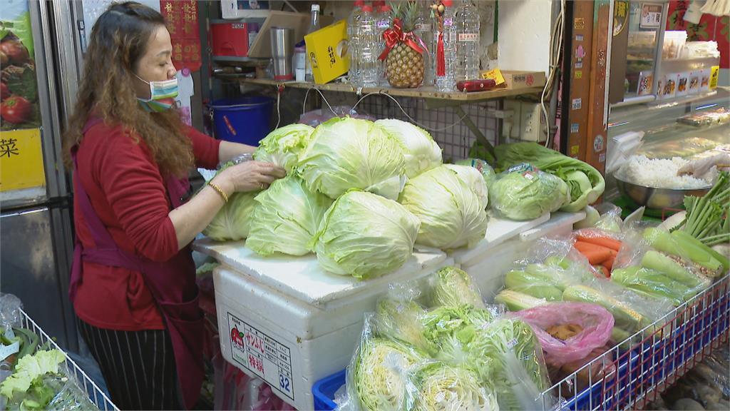 每公斤只剩5.5元!高麗菜產量過剩價格崩盤