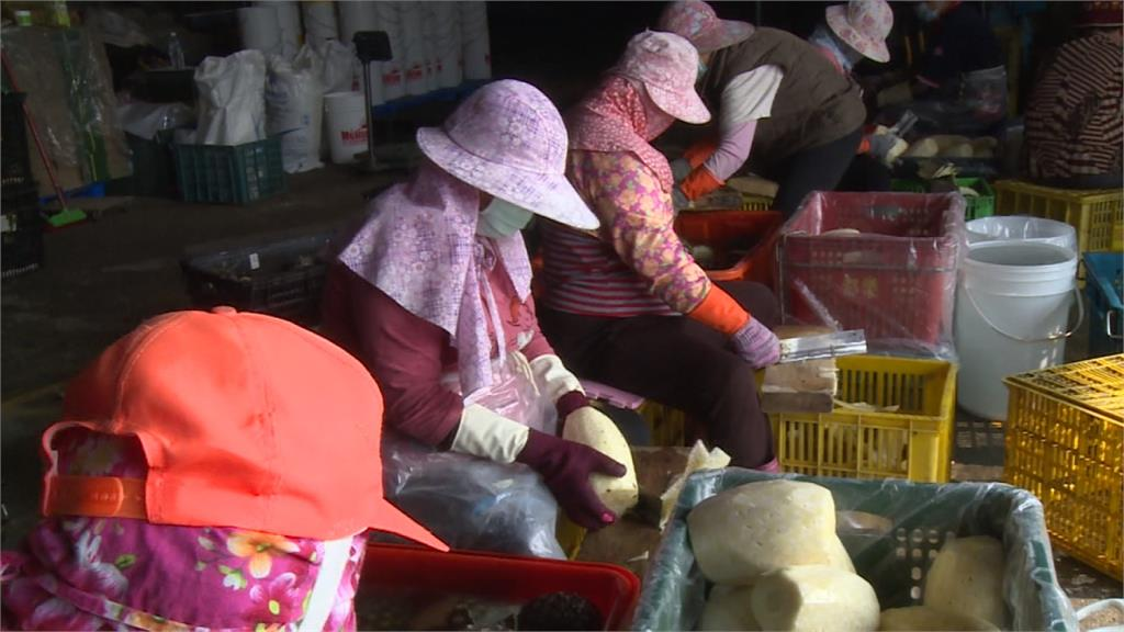 中祭「農林22條」搶台灣人才 陳吉仲:矮化台灣