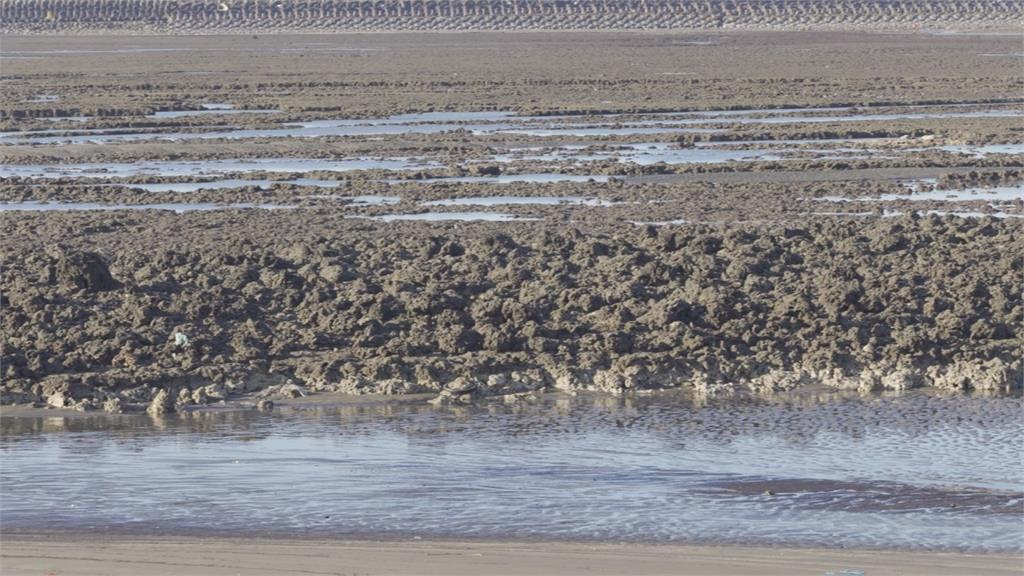 3月30日學界藻礁座談 潘忠政批:沒法律效力