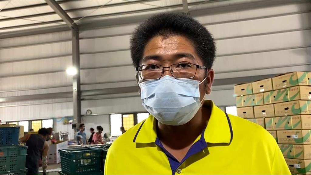 中國禁台灣鳳梨延燒 傳香港貿易商藉機「賤價購買」