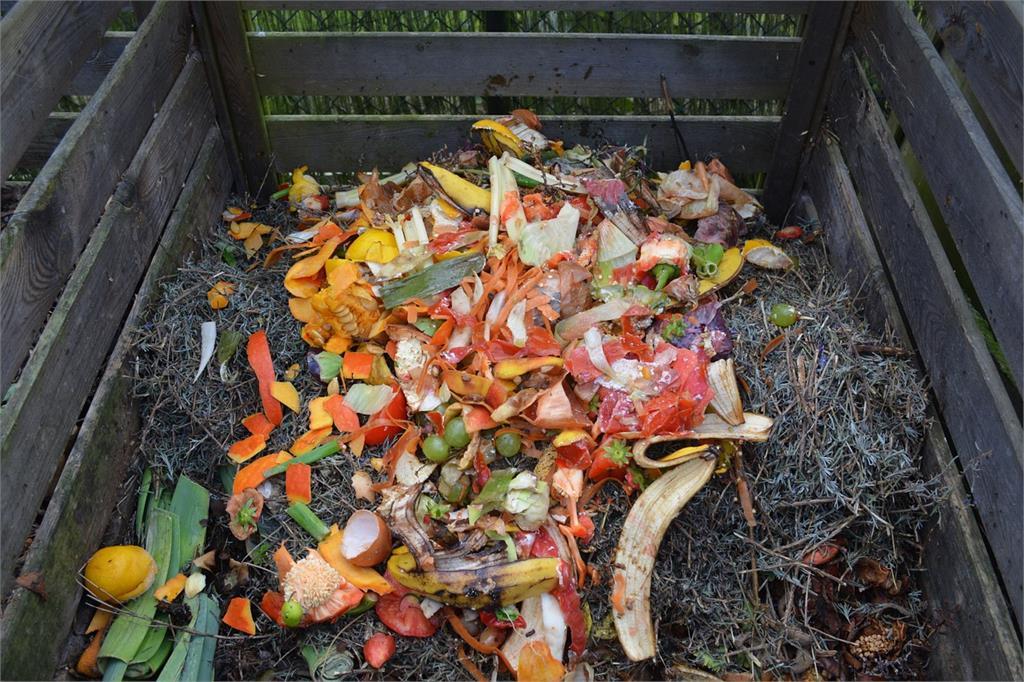蛋殼、咖啡渣不能直接拿來施肥?少了「這步驟」反而害死植物